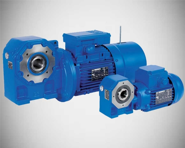 Standardfit Worm gearmotors
